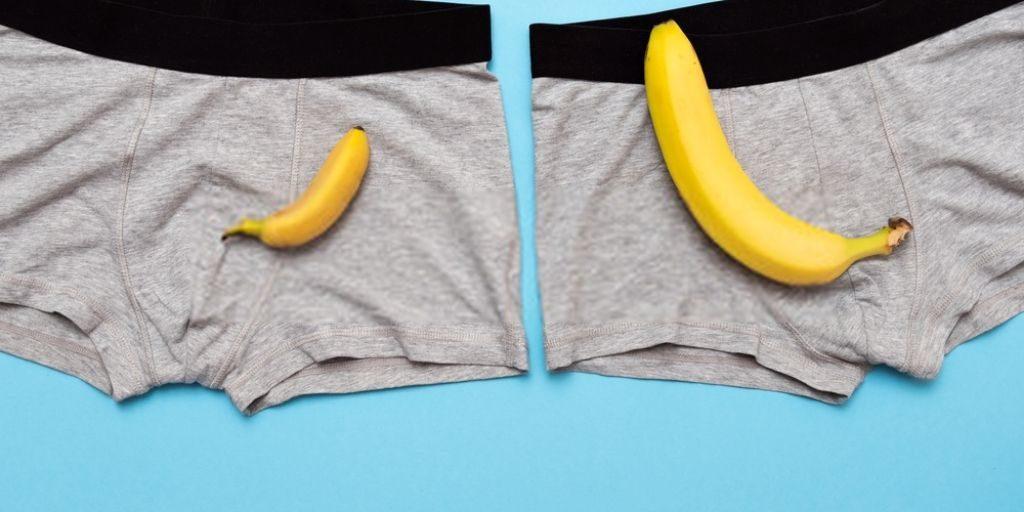 Large Penis Underwear